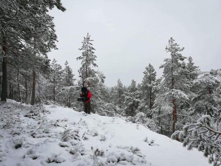 Yö ulkona talvella riippumatossa Etelä-Konneveden kansallispuistossa. Yöllä satoi paksulti lunta.