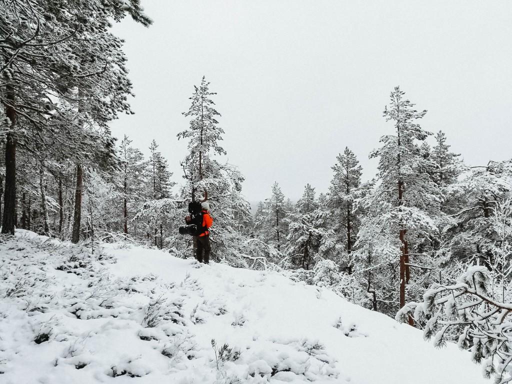 Etelä-Konneveden kansallispuistossa talvella. Maisema lumen peitossa, ei näkynyt pitkälle.