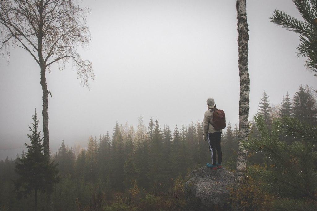 Keski-Suomalainen luonto syksyn harmaudessa. Sumua ja kosteutta Lehesvuoren luontopolulla.