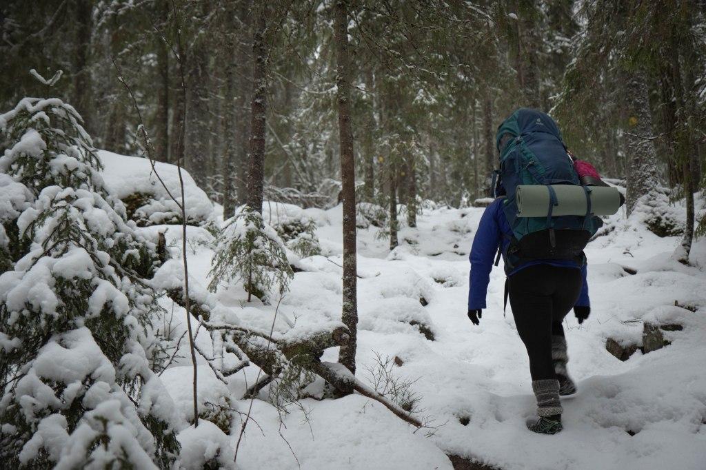 Etelä-Konneveden kansallispuistossa talvella. Polut olivat lumen peitossa, ei muita ihmisiä.